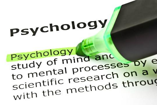 Psychology Concentration Now Available