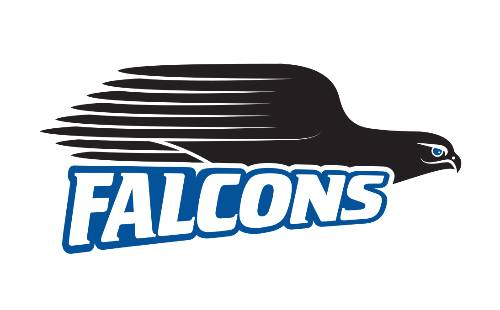 blue falcons logo