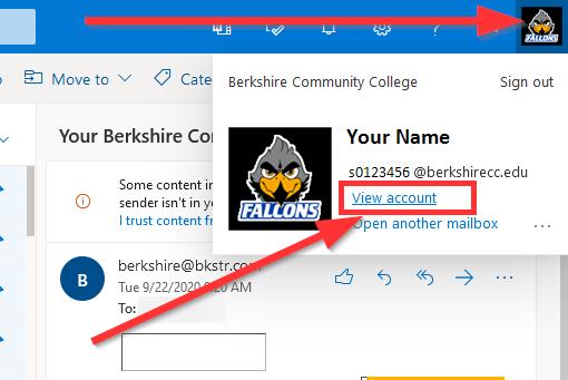 screenshot of Outlook Profile Popup